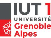 logo_IUT1